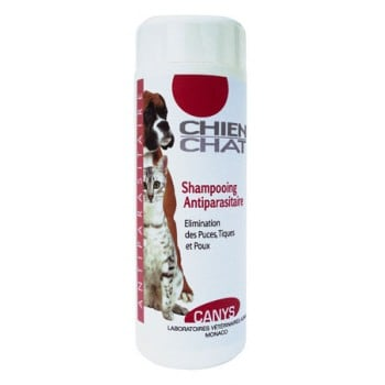 shampooing-antiparasitaire